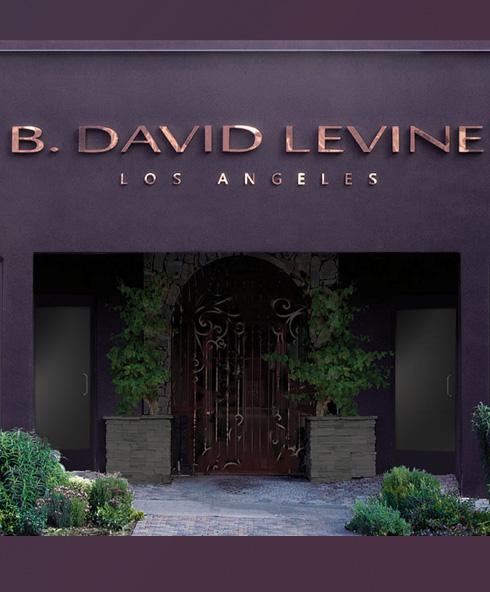 B David Levine LA